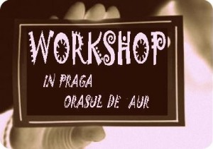 afis workshop